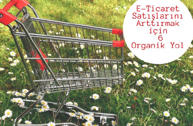 E-Ticaret Satışlarını Arttırmak için 6 Organik Yol