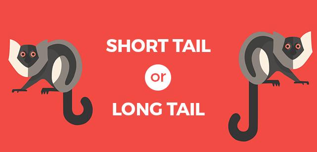 long-tail-anahtar-kullanimi